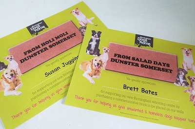dunster beach huts, salad days, holi moli, birmingham dogs home, dog rescue, dogs, certificate, donation, charity