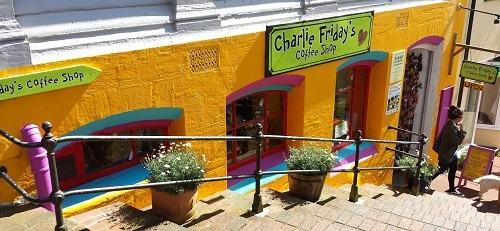 Maverick visiting Charlie Fridays Cafe Lynton